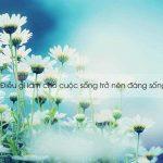 Khi hơi thở hóa thinh không || Paul Kalanithi