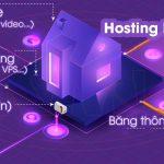 Hosting là gì? Hosting Wordpress khác Hosting web ở điểm nào?