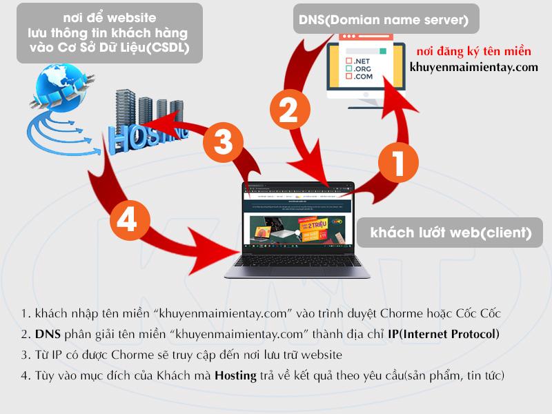 Website hoạt động như thế nào